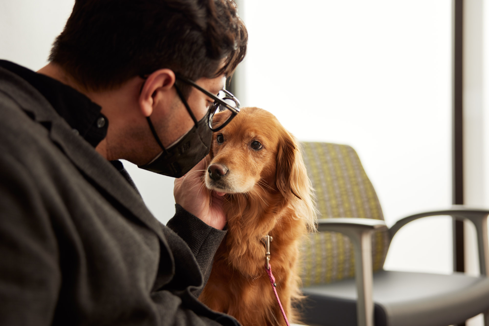 Owner and Golden | Healthcare Lifestyle Photography